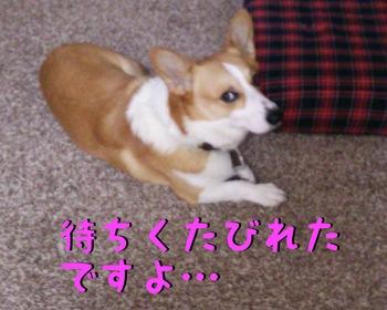 DSC_0690-2.jpg