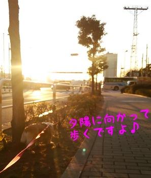 DSC_1097.jpg
