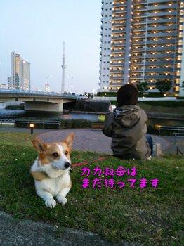 DSC_2104.jpg