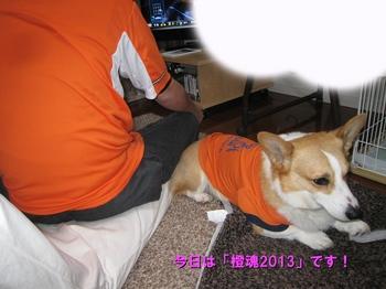IMG_7725 1.jpg