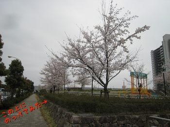 IMG_7418.jpg