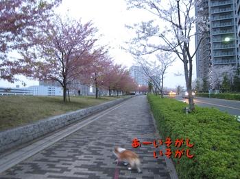 IMG_7445.jpg